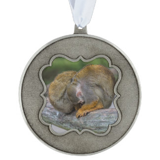 Baby Squirrel Monkey Pewter Ornament