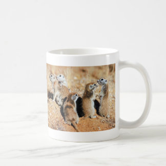 Baby Squirrels Classic White Coffee Mug