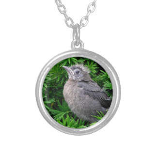 Baby Starling Silver Plated Necklace