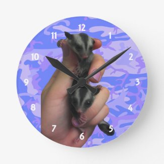 Baby Sugar Gliders Clock