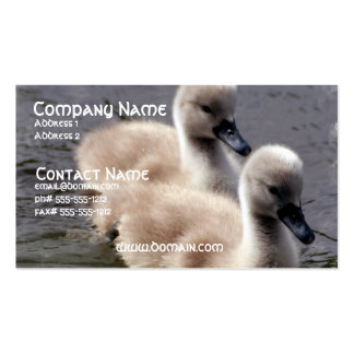 Baby Swans Business Card