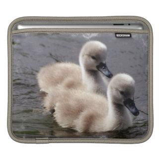Baby Swans iPhone Case iPad Sleeves