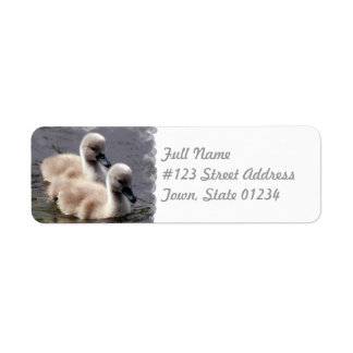 Baby Swans Mailing Label
