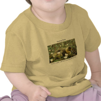 Baby T-shirt / White Fronted Gosling
