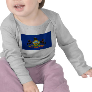 Baby T shirt with Flag of Pennsylvania