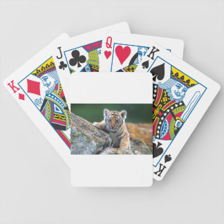 Baby Tiger Cub Bicycle Playing Cards