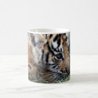 Baby Tiger cub lying down Coffee Mug