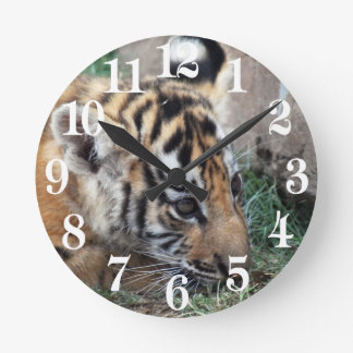 Baby Tiger cub lying down Round Clock
