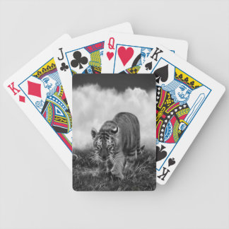 Baby Tiger stalking in Black and white Bicycle Playing Cards