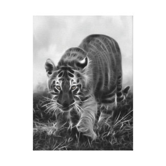 Baby Tiger stalking in Black and white Canvas Print
