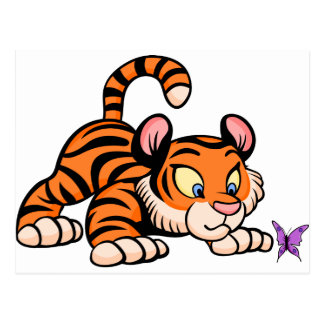 Baby Tiger with butterfly Postcard