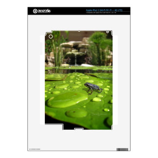 Baby Toad in Pond iPad 3 Skin