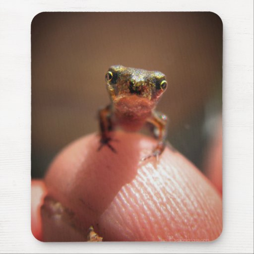 Baby Toad / Tadpole Mousepads