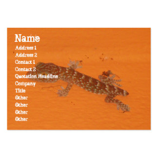 Baby Tokay Gecko Business Cards