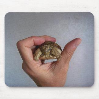 Baby Tortoise Mousepad