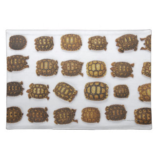 Baby tortoises arranged in rows placemats