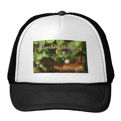 Baby Tree Frog in Bonsai plant with text Trucker Hat