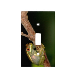 Baby Tree Frog Light Switch Cover