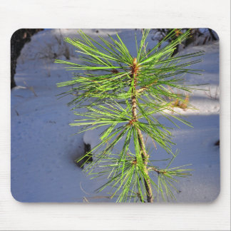 Baby tree in snow mouse pad