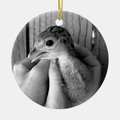 baby turkey bw in hands Double-Sided ceramic round christmas ornament