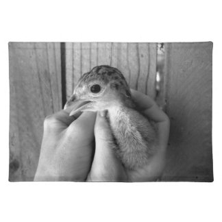baby turkey bw in hands placemat