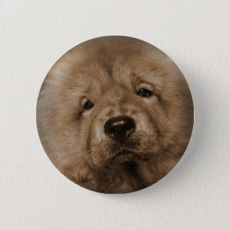 Baby Udon Pinback Button