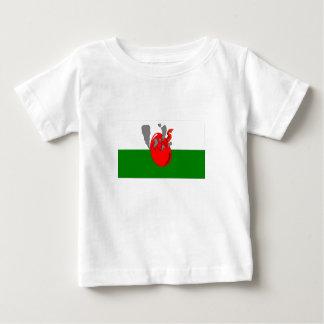 Baby Wales T-shirt