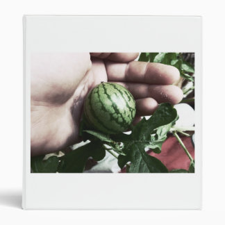 Baby watermelon in hand fruit picture binders