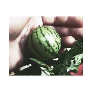 Baby watermelon in hand fruit picture canvas print