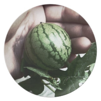 Baby watermelon in hand fruit picture dinner plate