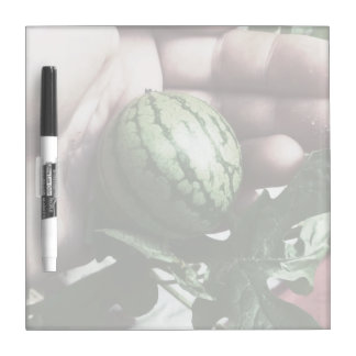 Baby watermelon in hand fruit picture dry erase whiteboard