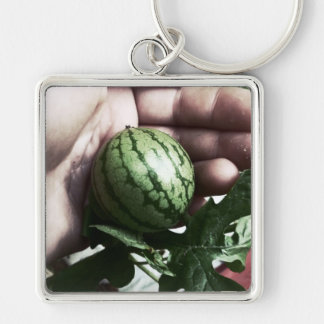Baby watermelon in hand fruit picture keychains