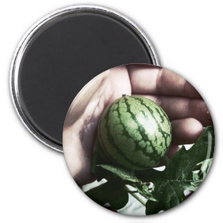 Baby watermelon in hand fruit picture refrigerator magnets