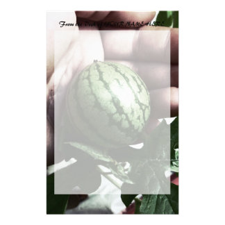 Baby watermelon in hand fruit picture stationery
