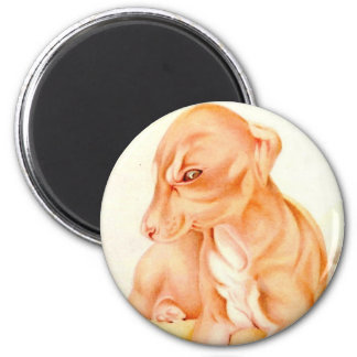 Baby Whippet - SUPER CUTE ! 2 Inch Round Magnet