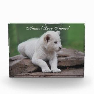 Baby white lion cub 2 acrylic award