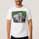 Baby white lion cub 2 shirt