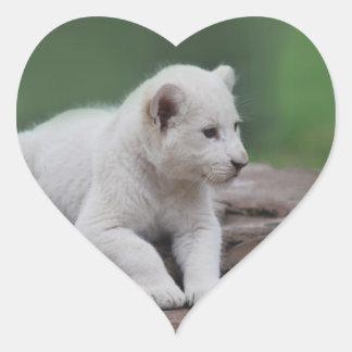 Baby white lion cub 2 heart sticker