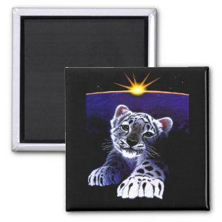 Baby White Tiger Magnet