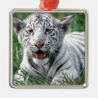 Baby White Tiger Metal Ornament
