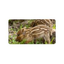 Baby Wild Boar Label