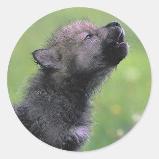 Baby Wolf Howls Round Sticker