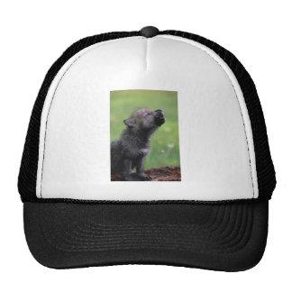 Baby Wolf Howls Trucker Hat