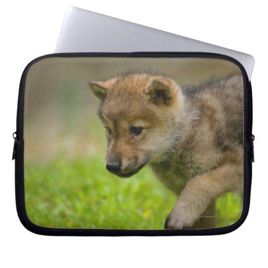 Baby Wolf Laptop Sleeve