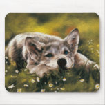 Baby Wolf Mousepad