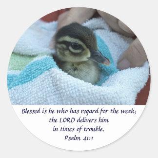Baby Wood Duck Classic Round Sticker