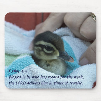 Baby Wood Duck Mouse Pad