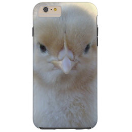Baby Yellow Chicken, Tough iPhone 6 Plus Case