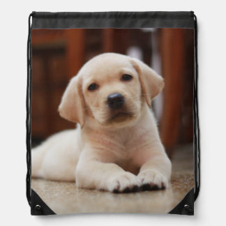 Baby Yellow Labrador Puppy Dog laying on Belly Drawstring Backpack