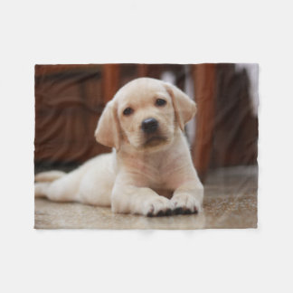 Baby Yellow Labrador Puppy Dog laying on Belly Fleece Blanket